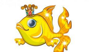 kitaec-hvana-zlatna-ribka-89360